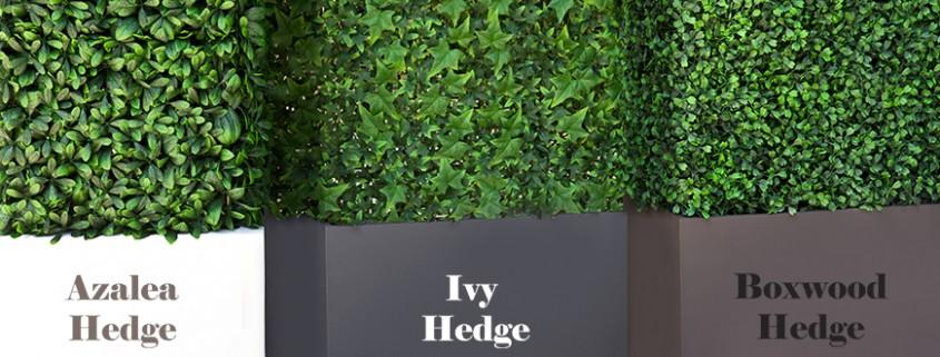 Popular Artificial Foliages: Azalea, Ivy, and Boxwood