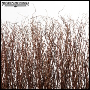 Curly Willow Twigs Screen
