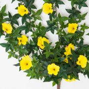 Outdoor Artificial Morning Glory Vine - Yellow Flowers