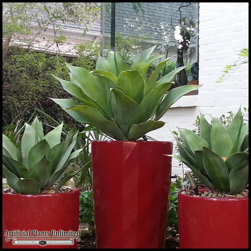learn the benefits of combining outdoor artificial plants and live
