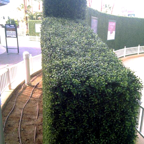 Artificial boxwood hedges create privacy anywhere while improving aesthetics. | Artificial Plants Unlimited blog